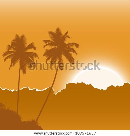 tropic beach palms on the