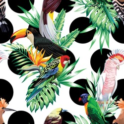 Tropic exotic multicolor birds toucan, parrot, macaw, hoopoe with tropical plants, banana palm leaves, flowers Strelitzia on a white background with black circle. Print jungle seamless vector pattern