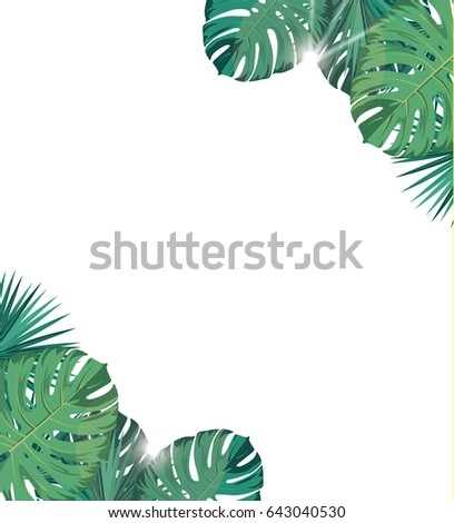 Tropic leaves with sunshine. Tropic background. Banner
