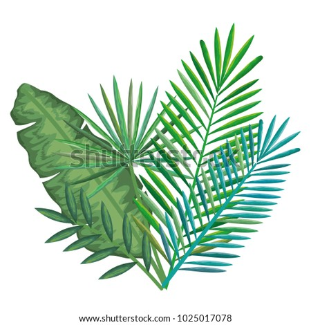 tropical and exotic palms leafs - Shutterstock ID 1025017078