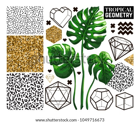 Tropical and geometry collection in trendy style. Set of vector hand drawn palm leaves, geometric elements, gold glitter and seamless textures isolated on white background.