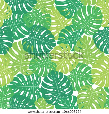 tropical background with