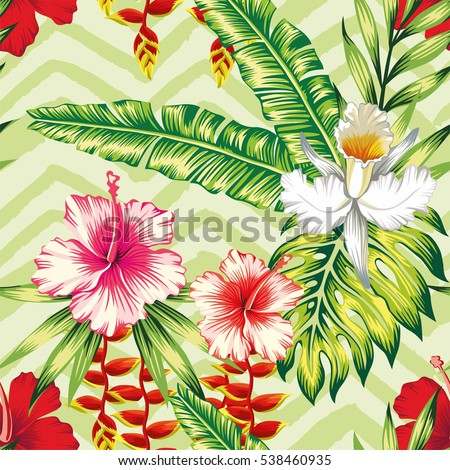 tropical banana palm leaves and