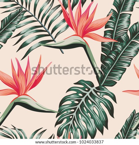 tropical beach flowers bird of