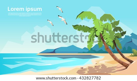 tropical beach island palm tree