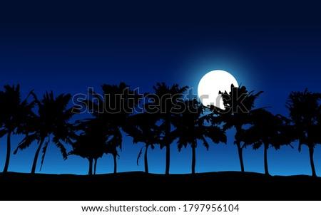 tropical beach night landscape