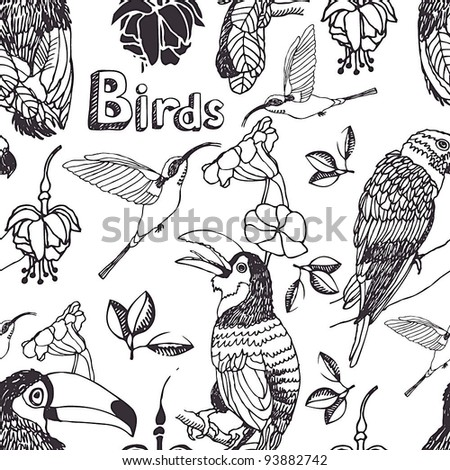 Tropical birds background