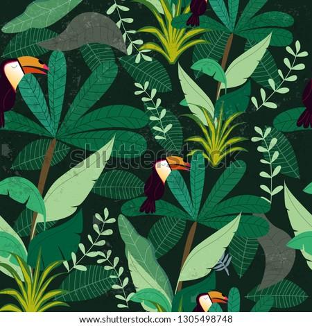 tropical botanical jungle
