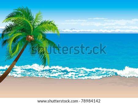 Tropical coast. Vector illustration  of coconut palm tree on a beach - Horizontal format