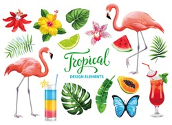 Tropical collection for summer beach party: exotic flowers, leaves, cocktails, flamingos, fruits and butterflies. Vector design isolated elements on the white background.