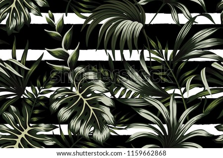 stock-vector-tropical-dark-green-leaves-seamless-pattern-black-and-white-striped-background-exotic-jungle