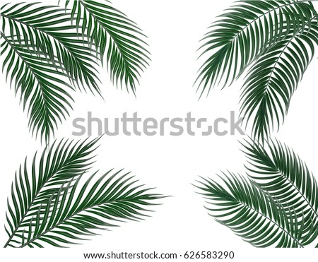 Tropical dark green palm leaves on four sides. Set. Isolated on white background. Vector illustration