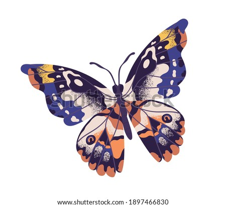 Tropical elegant butterfly with colorful wings and antennae isolated on white background. Pretty flying moth top view. Gorgeous exotic spring insect. Colored flat textured vector illustration