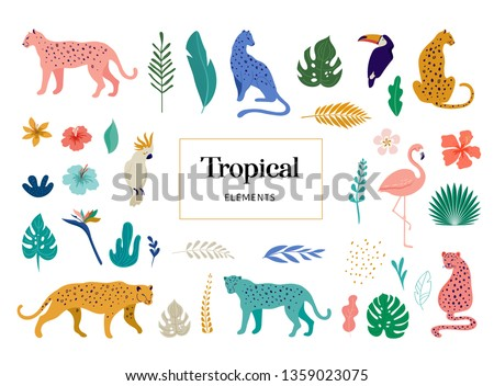 tropical exotic animals and