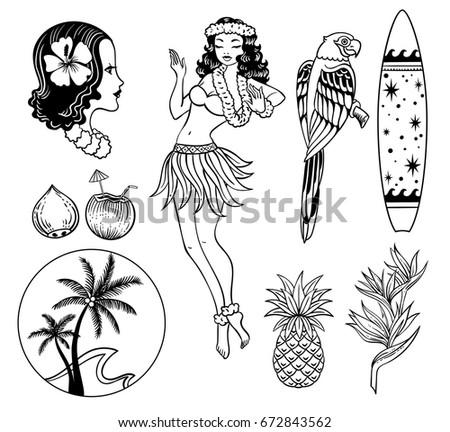 tropical exotic sea vector set