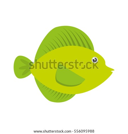 tropical fish sea life vector