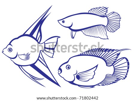 Tropical Fish. Set #3. Vector illustration on white background for design
