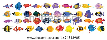 tropical fish vector cartoon