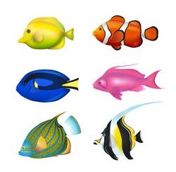 Tropical Fishes Set. Zebrasoma, Clownfish, Blue Tang, Lyretail Anthias, Angelfish, Moorish Idol Vector Illustration Set.