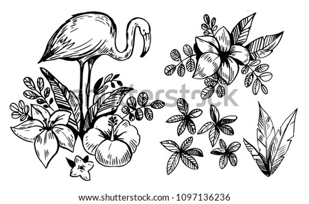 tropical flowers and flamingo....