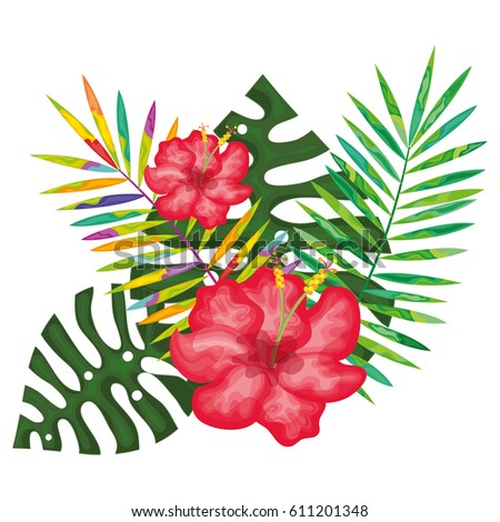 tropical flowers decorative card