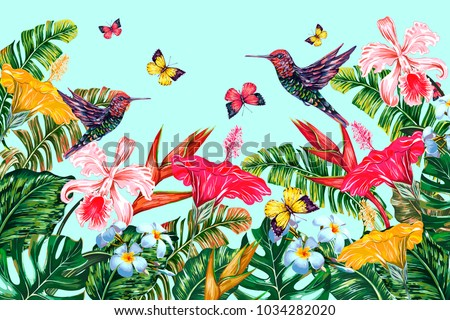 tropical flowers  hummingbirds