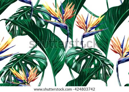 tropical flowers  jungle leaves