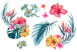 Tropical flowers, palm leaves, jungle leaf, bird of paradise flower, hibiscus. Vector exotic illustrations, floral elements isolated, Hawaiian bouquet for greeting card, wedding, wallpaper
