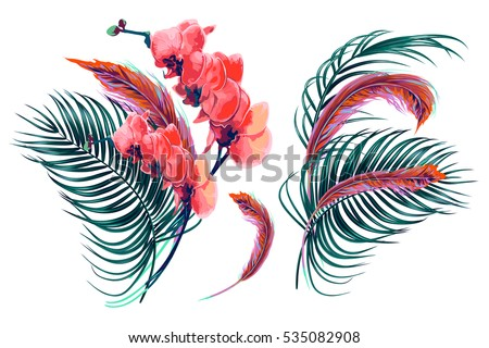 Tropical flowers, palm leaves, orchid, feathers. Vector exotic illustrations, floral elements isolated on white background, bohemian decoration bouquet, boho style for greeting card, wedding
