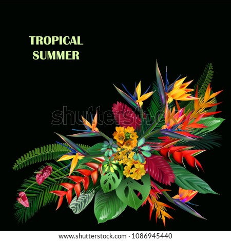tropical flowers summer