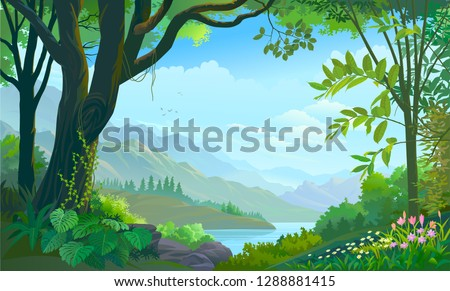 tropical forest  big tree