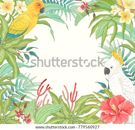 Tropical frame with Parrots, flower Hibiscus, Plumeria, Orchid and leaves. Vector illustration in vintage style.