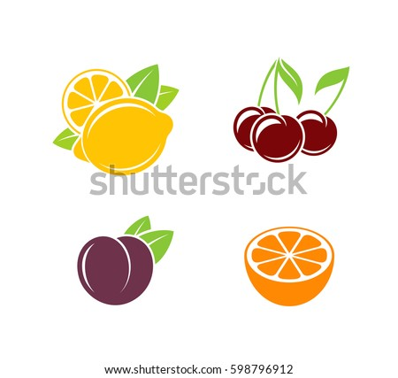 Tropical fruit and citrus fruit. Vector illustration