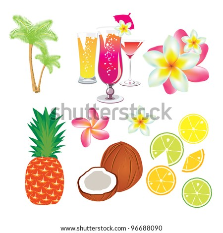 tropical fruits, flowers and cocktails