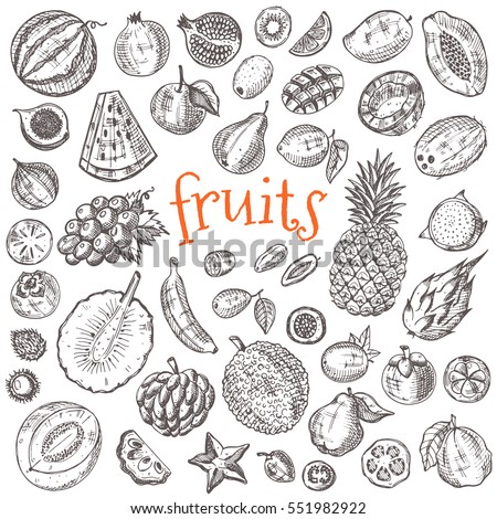 tropical fruits set hand drawn