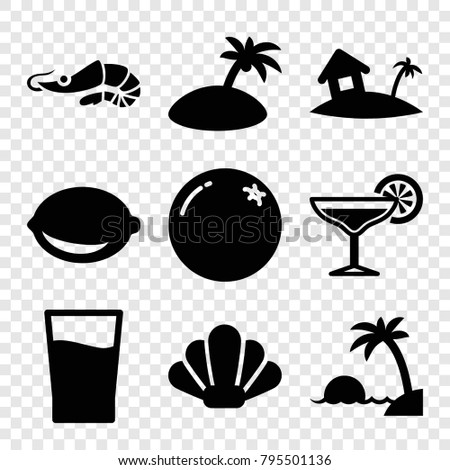 tropical icons set of 9