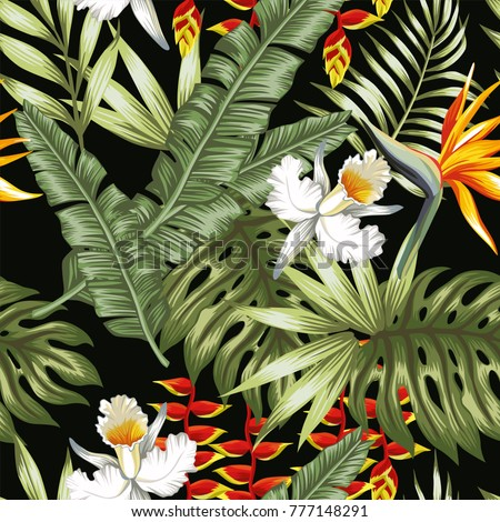 tropical jungle vector flowers