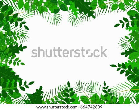 tropical jungle with leave background  #664742809