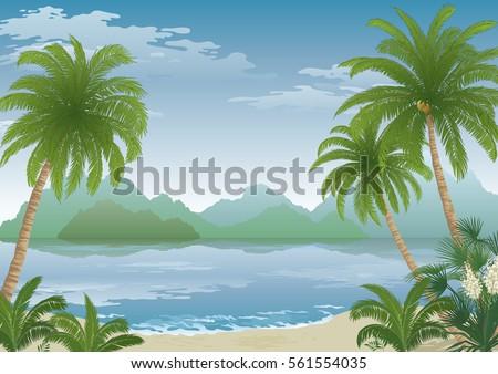 tropical landscape  palm tree