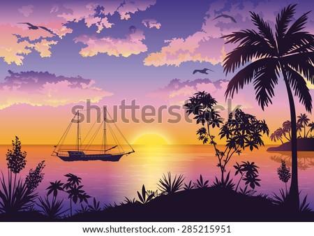 tropical landscape  sunset sea