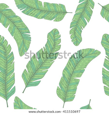Tropical  leaves. Botanical seamless pattern. Vector background.