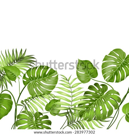 tropical leaves design for text