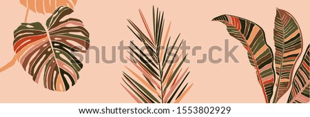 Tropical Palm Leaves in a minimalist trendy style. Silhouette of a plant banana, monstera and Dypsis in a contemporary simple abstract style on pink background. Vector illustration collage.