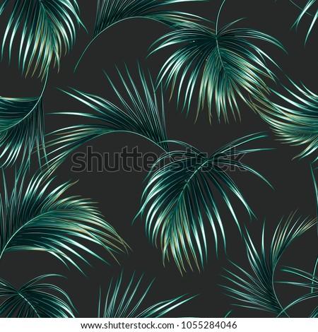 tropical palm leaves  jungle