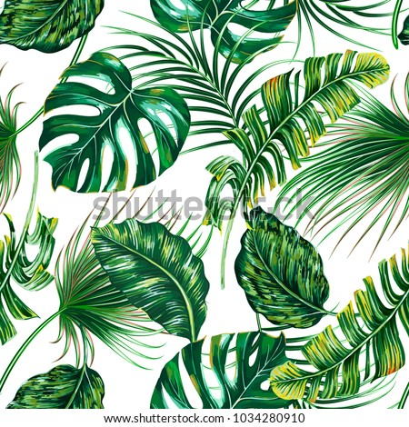Tropical palm leaves, monstera, jungle leaf vector seamless floral summer pattern background