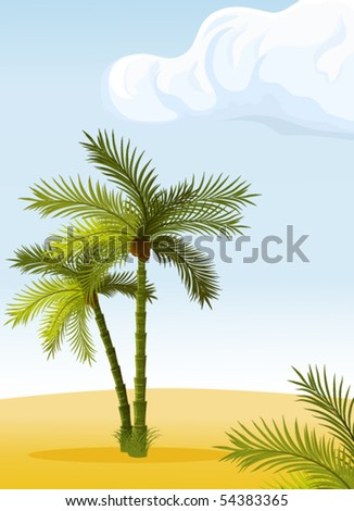 tropical palm-trees