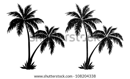 Tropical palm trees, black silhouettes and outline contours on white background. Vector