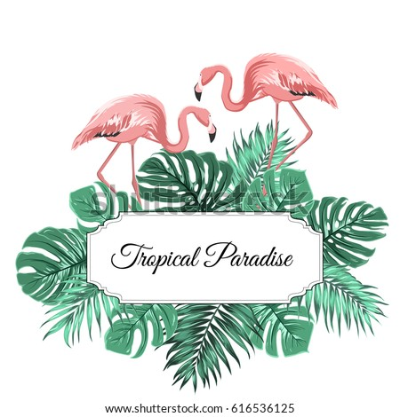 tropical paradise promotion