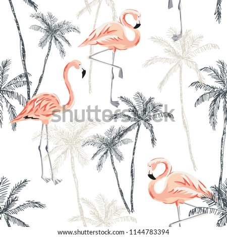 tropical pink flamingo birds