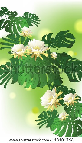 tropical plants, white flowers (vector illustration) card